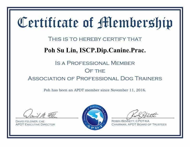 APDT-Membership-Certificate