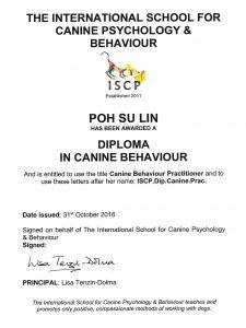ISCP-diploma-Su-Lin-copy-1